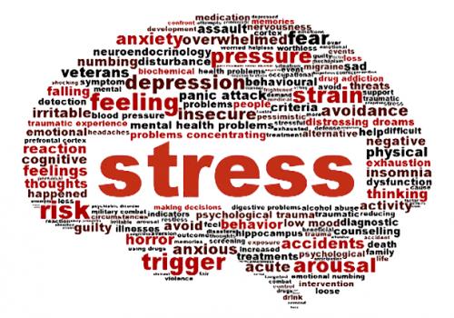 Stress en controle